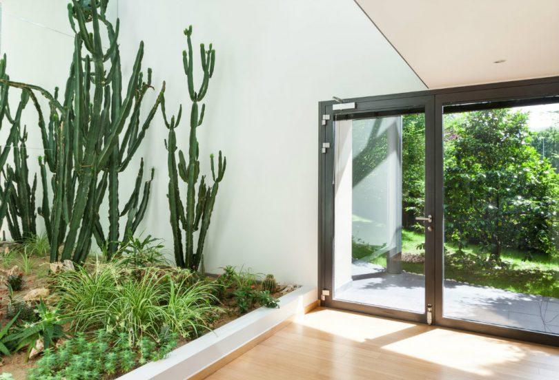 Entenda Como Fazer Um Lindo Jardim De Inverno Na Sala